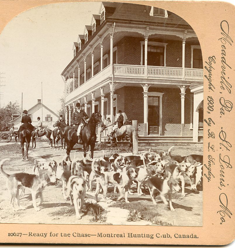 Details about MONTREAL HUNTING CLUB HUNTERS DOGS HORSES READY FOR CHASE  1900 STEREOVIEW